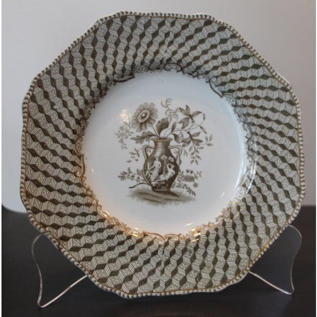 Brown Spode Portland Vase Pattern Luncheon Set - Image 10 of 10