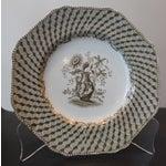 Image of Brown Spode Portland Vase Pattern Luncheon Set