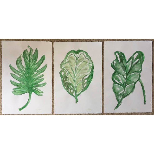 "Original Leaf Watercolor-15"" X 22""-Signed - Image 3 of 4"