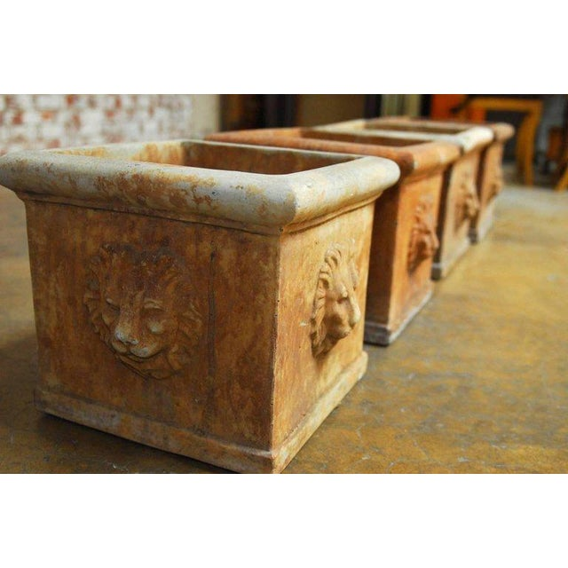 Continental Style Sandstone Planters with Lions Head Motif - Image 7 of 10