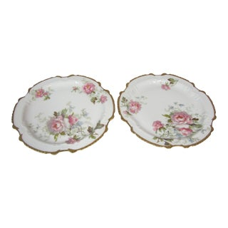 Hand Painted Limoges Plates - A Pair