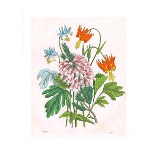 Antique Garden Bouquet Archival Print