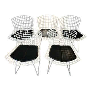 Wire Frame Bertoia Chairs - Set of 5