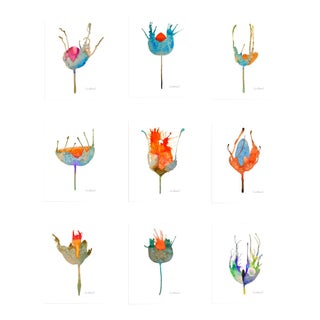 Premium Giclee Prints of Botanical Grouping Set of 9