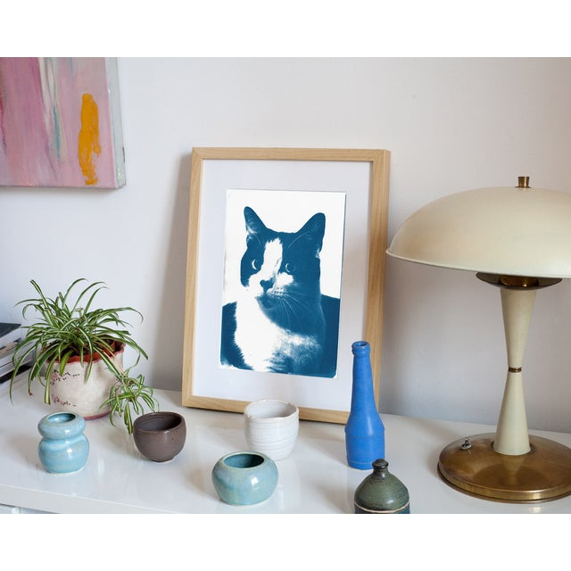 Limited Edition, Cyanotype Print- Cat Portait - Image 3 of 4