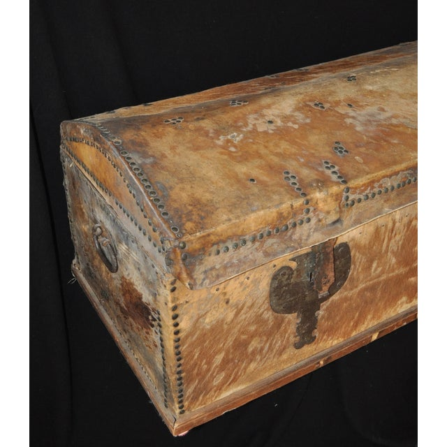 Large Hide Covered Trunk - Image 6 of 7
