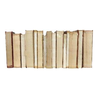 Deconstructed Antique Books, S/15