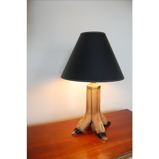 Image of White Tail Deer Taxidermy Lamp