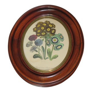 Vintage Oval Wood Picture Frame