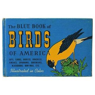 Vintage Blue Book of Birds