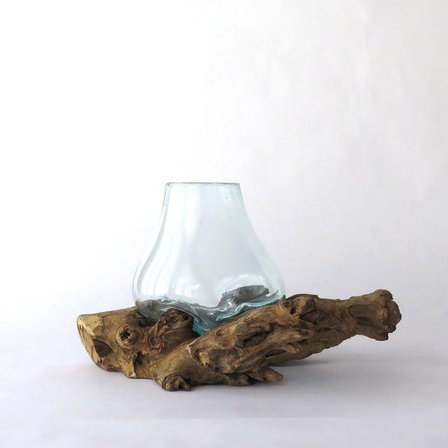 Driftwood Teak Table: Glass On Teak Driftwood Terrarium