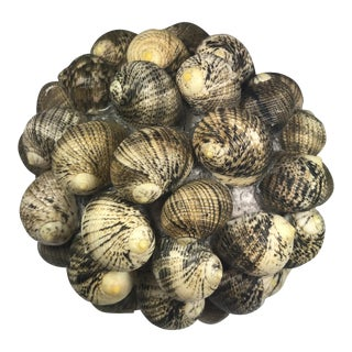 Shell Ball Decorative Object