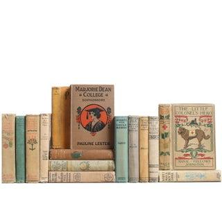 Muted Girls' Fiction - Set of 15
