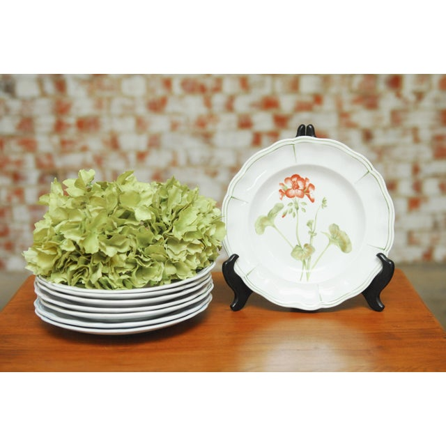 """Set of 66 French Luneville Hand-Painted Floral Dining Plates """"Rovina Epinal"""" - Image 10 of 11"""