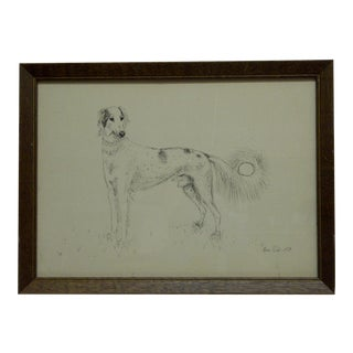 "Original Drawing ""Long Haired Greyhound Dog"" by Alison Robb c.1974"