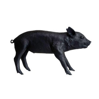 Black Gloss Piggy Bank