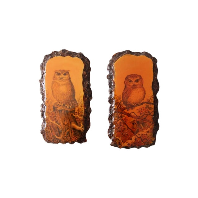 1970's Owl Paintings on Lacquered Wood - Pair - Image 1 of 9