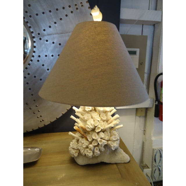 Gorgeous Authentic Coral Table Lamp - Image 2 of 6