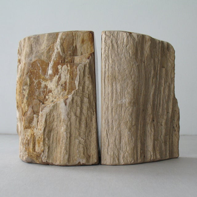 Petrified Wood Bookends - Pair - Image 5 of 9