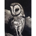 Image of Barn Owl by Sylvia Roth