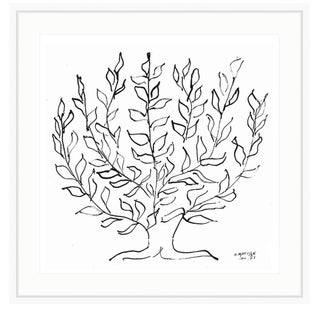 Henri Matisse's Le Platane Botanical Tree Framed Print