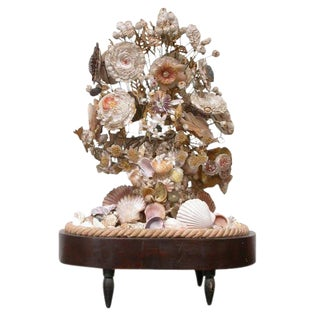 Victorian Decorative Shell Display