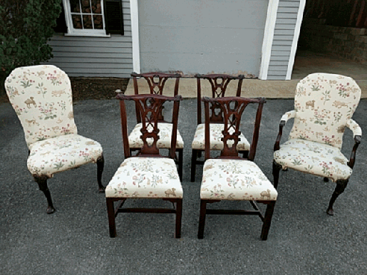 Transitional dining room chairs