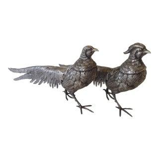 Italian Silver Pheasants - A Pair