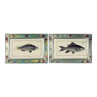 Engravings of Fish Prints - A Pair