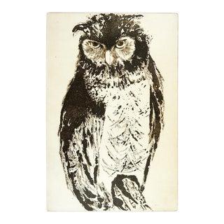 Owl Etching by Clara Montgomery