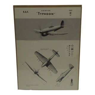 "Vintage WWII ""Hawker Typhoon"" Recognition Poster"