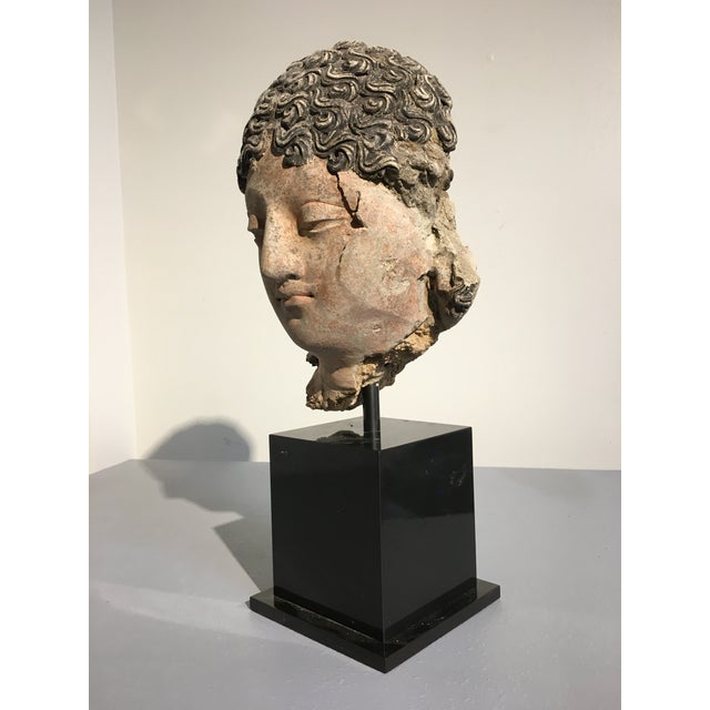 Gandharan Terracotta Head of a Bodhisattva, 3rd - 5th century - Image 5 of 10