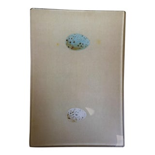 Kaas Glassworks NYC Bird Egg Decoupage Tray