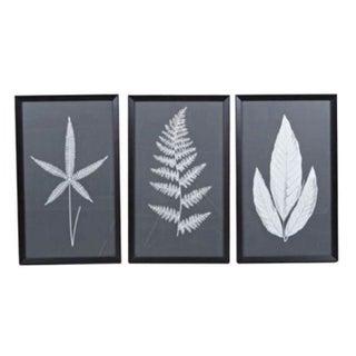 Charcoal Leaf Artwork - Set of 3