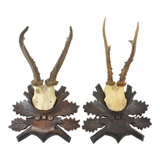 1940s German Mounted Deer Antlers - A Pair