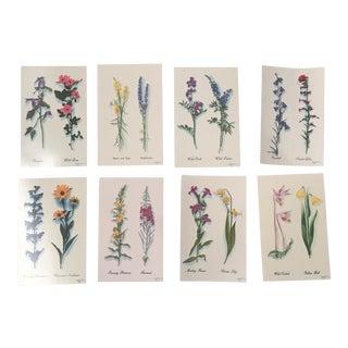 Harrison R. Crandall Wildflower Postcards - Set of 8