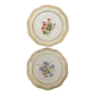 Antique Wedgwood Plates - A Pair