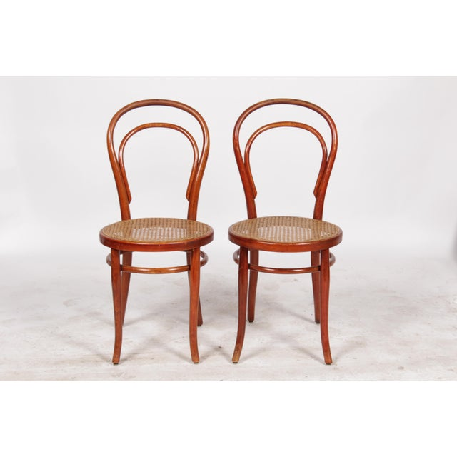 1910 Thonet Model 14 Bentwood Chairs - A Pair - Image 2 of 10