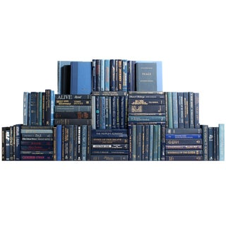 Modern Blue Book Wall - S/100