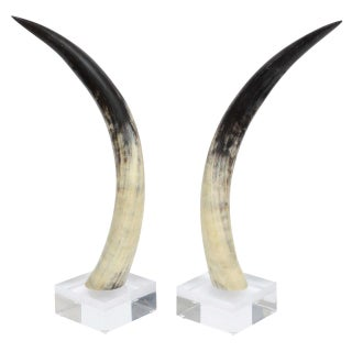 Horns on Lucite Bases - A Pair