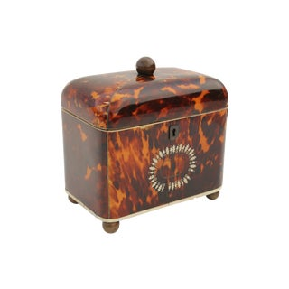 Antique Georgian Tortoiseshell Tea Caddy