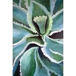 Image of 'Gypsophila' Acrylic Painting