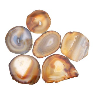 Cognac & Cream Agate Coasters - Set of 6