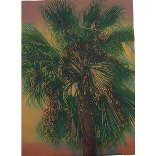 """Paradise Palm 2"" Watercolor Painting"