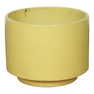 Yellow Gainey Flower Planter