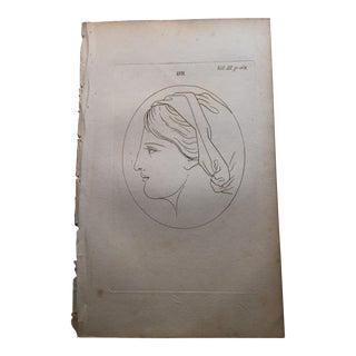 Woman in Profile Antique Physiognomy Art Print, 1804