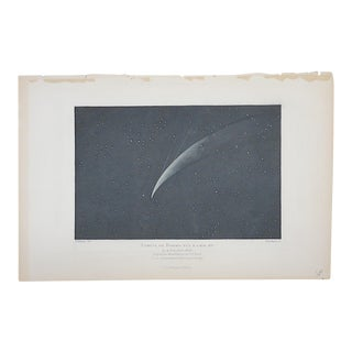 Antique Lithograph - Astronomy - Constellations