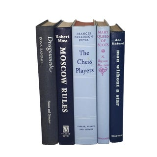 Vintage Display Books in Blues - Set of 5