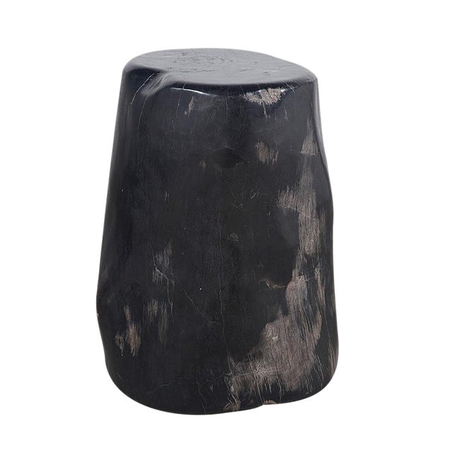 Petrified Wood Side Table - Image 1 of 2