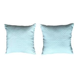 A Pair of Gambrell Renard Pillows